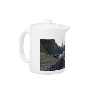 Lake Crescent Olympic National Park Teapot