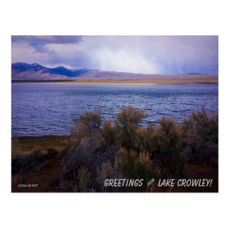 Lake Crowley #1 Postcard