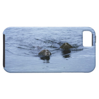lake district cumbria england iPhone 5 covers