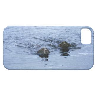 lake district cumbria england iPhone SE/5/5s case