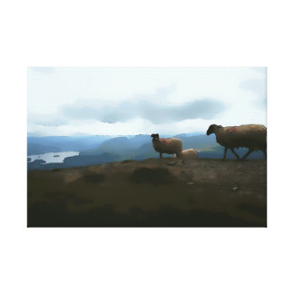 Lake District Sheep Small Canvas Gallery Wrapped Canvas