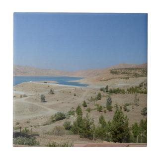 Lake Ducan3 Ceramic Tile