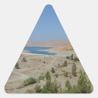Lake Ducan3 Triangle Sticker