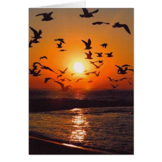 Lake Erie Sunset Card