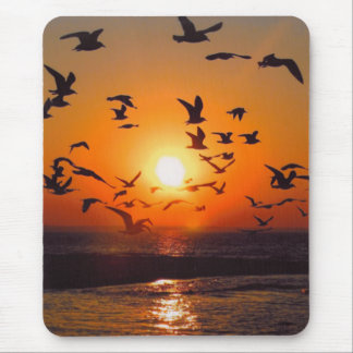 Lake Erie Sunset Mouse Pad