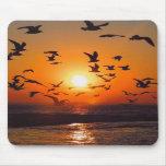 Lake Erie Sunset Mousepad