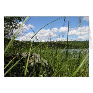 Lake grass card