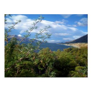 Lake Hawea, New Zealand Postcard