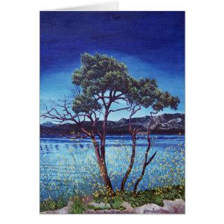 Lake Hemet Card