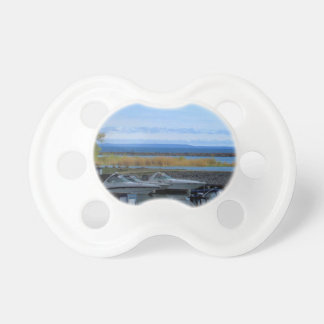 Lake Huron Collingwood Ontario Baby Pacifiers