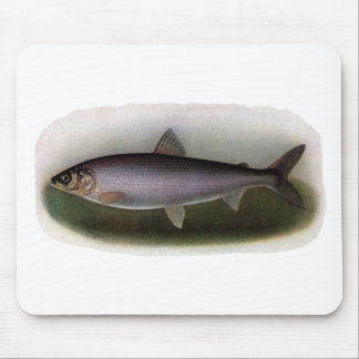 Lake Huron Herring Painting Mouse Pad