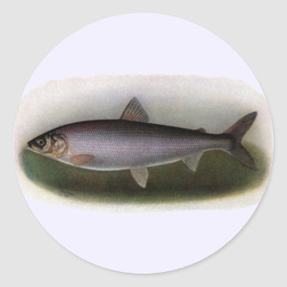 Lake Huron Herring Painting Sticker