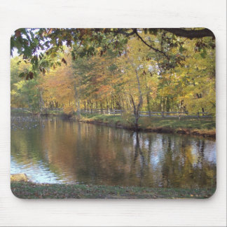 Lake In Autumn Mouse Pad