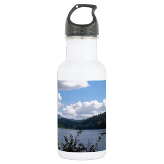 Lake In The City Stainless Steel Water Bottle