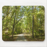 Lake Kittamaquandi Trail in Columbia Maryland Mouse Pad