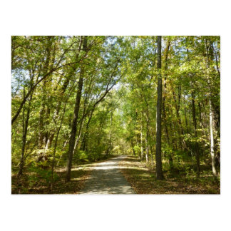Lake Kittamaquandi Trail in Columbia Maryland Postcard