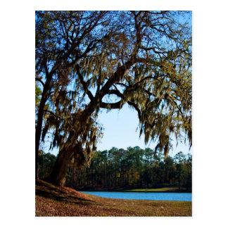 Lake Livingston postcard 2