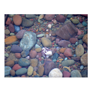 Lake McDonald Rocks Postcard