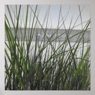 Lake Michigan behind grass Poster