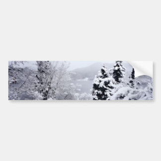 Lake Nojiri Bumper Sticker