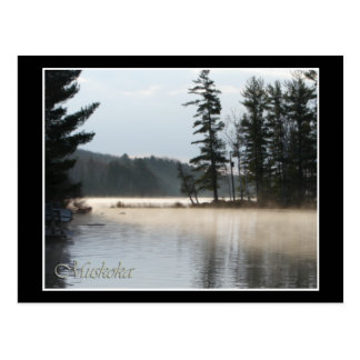 Lake of Fog Postcard