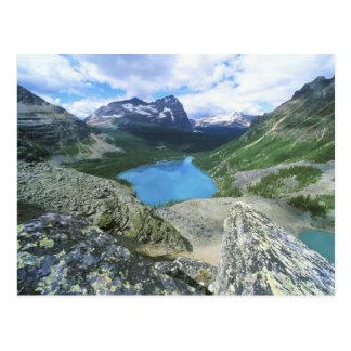 Lake O'Hara, Yoho NP, BC, Canada Postcard