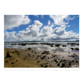 Lake Omapere Postcard