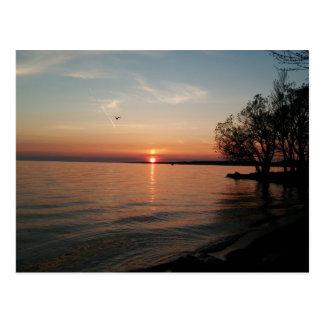 Lake Ontario at sunset Postcard