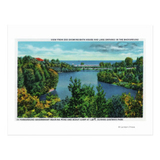 Lake Ontario & Durand Eastman Park Postcard