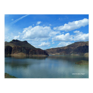 Lake Owyhee Postcard