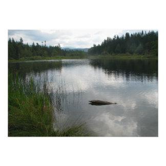 Lake Padden Stillness Custom Announcement