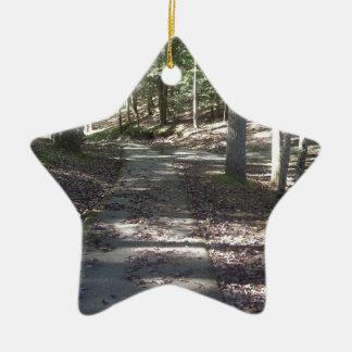 Lake Path Ceramic Ornament