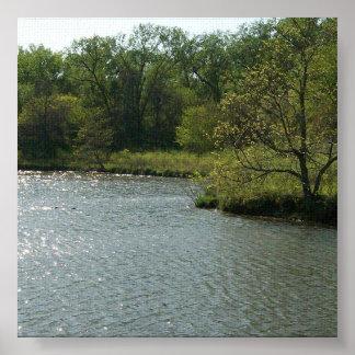 Lake Penny Poster