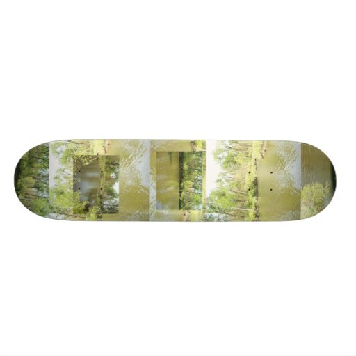 Lake Penny Skate Boards