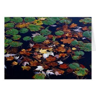 Lake Potpourri Card
