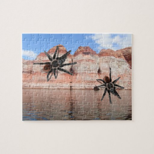 Lake Powell Utah creepy hard tarantula puzzle