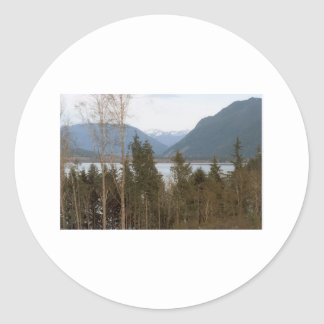 Lake Quinalt WA Olympic National Park Forest Photo Classic Round Sticker