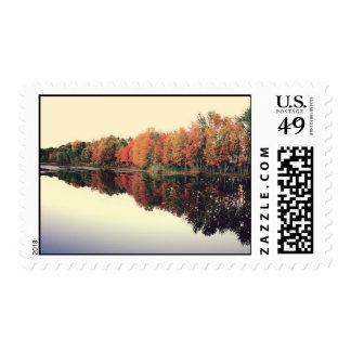 Lake Reflection Stamp