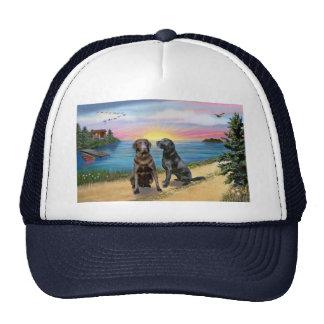Lake Road - Two Labrador Retrievers (Choc-Blk) Trucker Hat