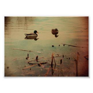 Lake scenery photo print