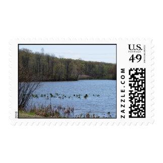 Lake Serenity Postage Stamp