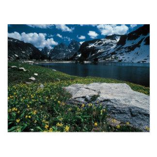 Lake Solitude , Grand Teton National Park , Postcard