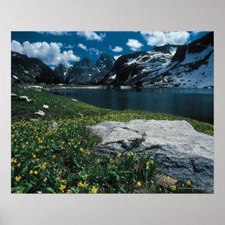 Lake Solitude , Grand Teton National Park , Poster