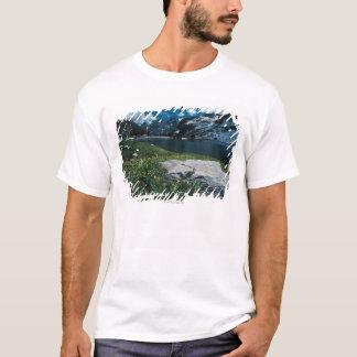 Lake Solitude , Grand Teton National Park , T-Shirt