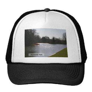 Lake Sparkles Trucker Hat