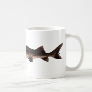 Lake Sturgeon - Acipenser fulvescens Classic White Coffee Mug