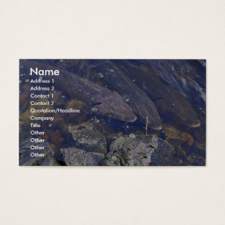 Lake Sturgeon Business Card