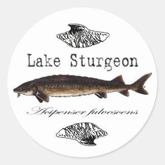 Lake Sturgeon Classic Round Sticker