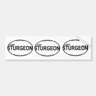 Lake Sturgeon Euro Stickers Car Bumper Sticker