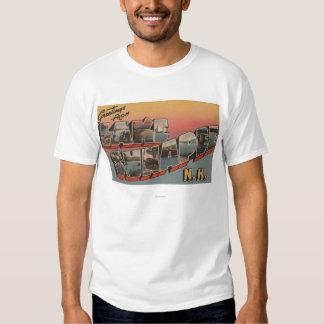 Lake Sunapee, New Hampshire - Large Letter Tee Shirt